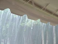 rain harvest