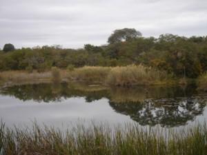 lowveld dam