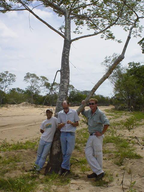 eia mozambique
