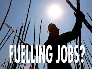 biofuels create jobs