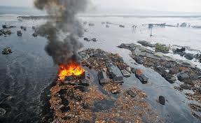 environmental impact of Japan crisis