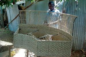 water hyacinth uses