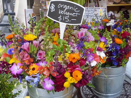 organic florists