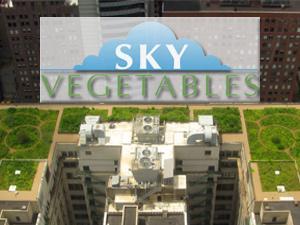 rooftop vegetable farming