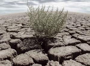 water crisis, water shortages