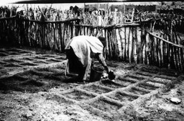 zuni water harvesting