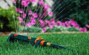 water saving in the garden