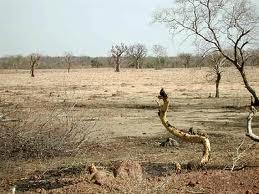 african drylands