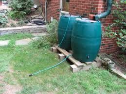 rain barrel usage tips