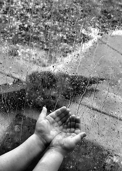 collect the rain