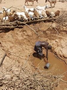 communal water resources