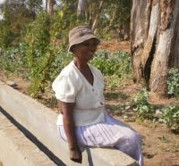 waste water irrigation