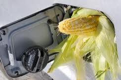 biofuel south africa