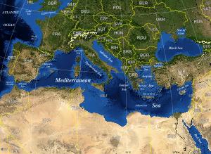 invasive species mediterranean