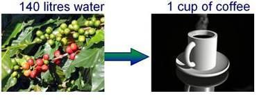 water footprint of food