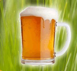 environmentally responsible drinking