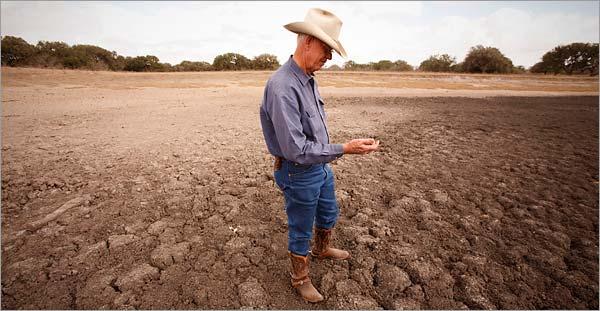 rainwater harvesting texas