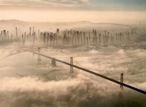 fog water harvesting