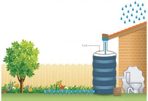 managing rainwater tanks