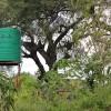 jojo water tanks